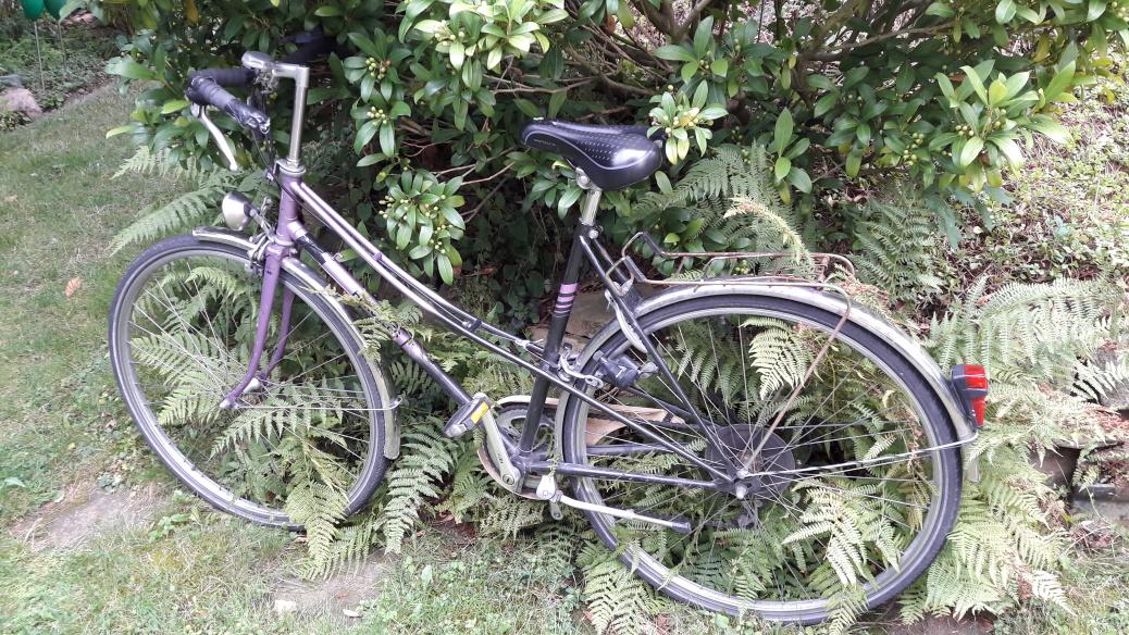 Radwandern: aktuelle Termine
